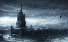 арт, москва, руины, город, снег, здания, заброшенность, постапокалипсис, зима, вороны, птицы