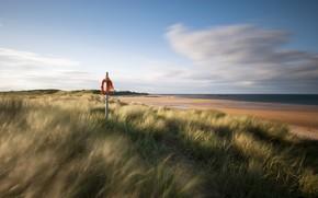 Великобритания, Англия, море, песок, берег, трава, спасательный круг