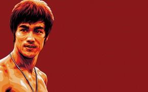 Bruce Lee, leyenda, memoria, maestro, imagen, rojo