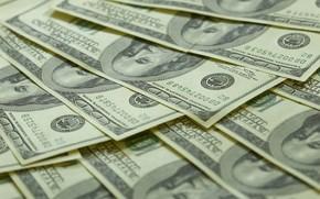 dlar, Bucks, moneda, dinero