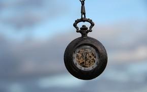 часы, макро, механизм, цифры, стрелки