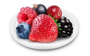 white, background, saucer, strawberry, raspberry, blackberry, Berries, macro