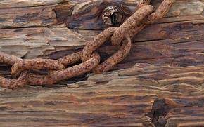 tree, iron, board, chain