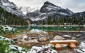 lake ohara, yoho national park, canada, Canada, lake, bench, snow, forest, ate, Mountains