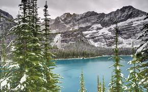 lake ohara, yoho national park, canada, Canada, lake, ate, Mountains