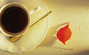 настроения, чашка, кружка, чай, лепесток, листочек, листик, фон, обои