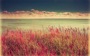 kazan, Russia, acqua, superficie liscia, natura, pietre, sabbia, spiaggia, sole, scogliera, erba, vento, giorno