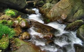 torrente, pietre, paesaggio