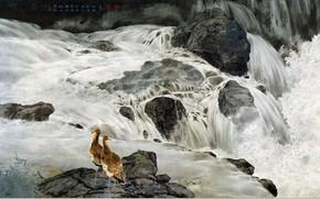 Pittura cinese, disegno, Arte, cascata, Uccelli, pietre, fiume, Personaggi