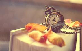 книга, лепестки, листья, часы, цепочка