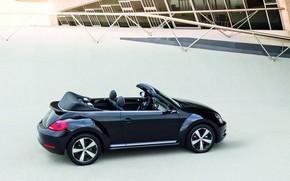 scarafaggio, Volkswagen