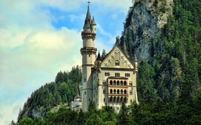 山, 岩石, 森林, 树, 青菜, 房子, 城堡, 塔