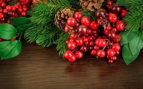 plant, holly, holly, Berries, red, leaves, branch, Cones, Tree, spruce, table