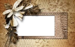 винтаж, ретро, засушенный цветок, лепестки, бумага