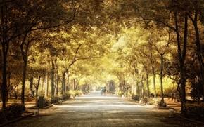 город, парк, осень