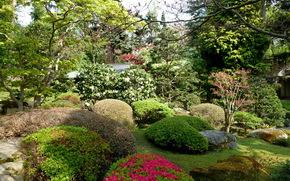 Сады, японский, albert kahn