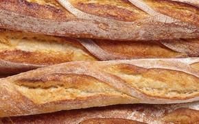 французская булка, еда, хлеб