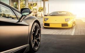 Aventador, Lamborghini, gelb, schwarz, Lamborghini