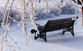 inverno, panchina, neve