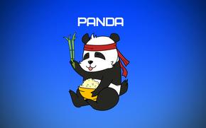 панда, картинки панды