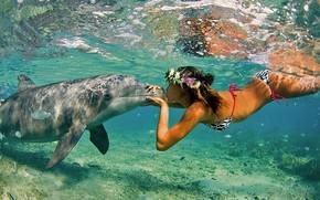 delfino, ragazza, oceano, mare, natura, estate, bacio, amicizia, coppia