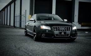 black, Audi