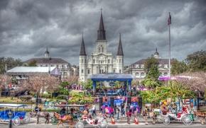 new orleans, New Orleans, Cavallo, Allenatore, cattedrale, scena, vacanza