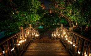 tropics, Hawaii, ladder, lights, night