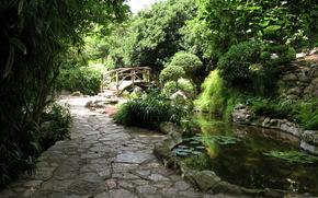花园, 泽克植物园, 美国, 得克萨斯州