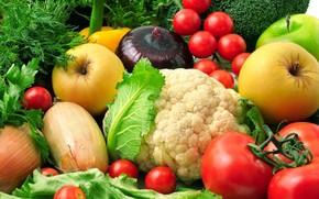 vegetables, fruit, onion, apples, cauliflower, Eggplant, dill, broccoli, greens, salad, cilantro