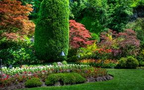 Giardini, Butchart victoria, Canada