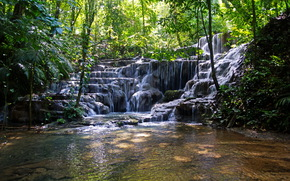 waterfall, Mexico, michol river, Trees, landscape