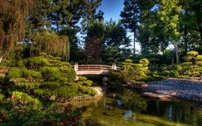giardino, earl ustioni miller, giapponese, giardino, Stati Uniti d'America, stagno, ponte