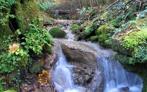 Водопад, мох, растительность