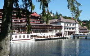 отель, лебеди, hotel, poiana, lac