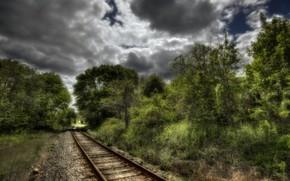 railroad, Trees, landscape