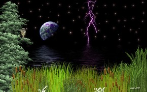night, lightning, grass, water