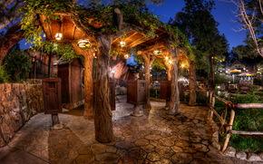 Stati Uniti d'America, California, Disneyland, notte, tronco d'albero