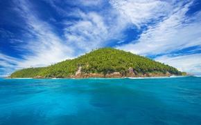seychelles, island, uninhabited, palms, sea, ocean, sky