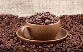 coffee, grain, cup