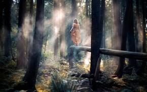 ragazza, foresta, vestire, alberi, tronco, Fortino