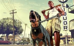 muzhik, bat, dog, Los Santos, Franklin, chop, rottweiler