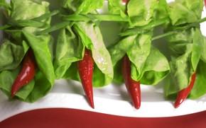 peppers, drops, salad, greens