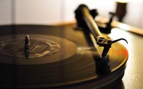 gramophone, record, macro