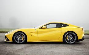 Baby, Nebel, Traum, ideal, Ferrari