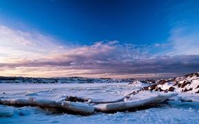 ghiaccio, inverno, pc, inverno, natura, natura, ghiaccio