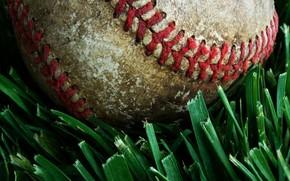 baseball, ball, grass, seam