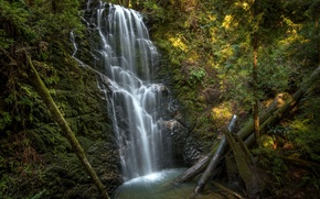Berry Creek Falls, California, wodospad, graty