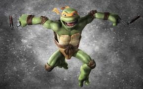 Teenage Mutant Ninja Turtles, Teenage Mutant Ninja Turtles, nunchuck, noir sur fond gris