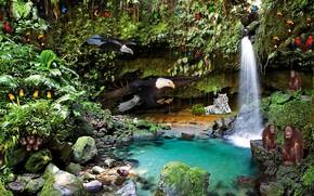водопад, растения, звери